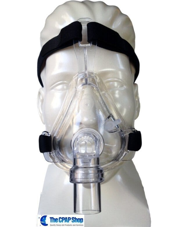 disposable full face mask